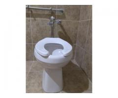 flush valve toilets